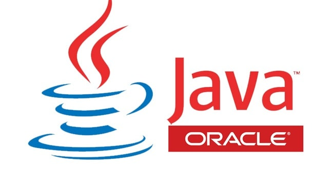 the java logo wide