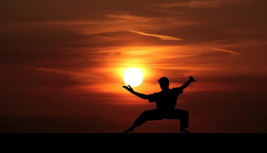 Man Doing karate under sunrise